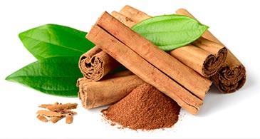 Cinnamon-in-Sri-Lanka